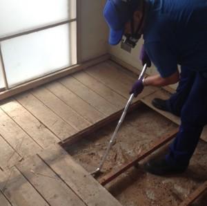 奈良市にて害虫の多い現場での特殊清掃