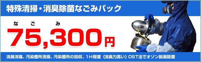 75,300円(なごみパック)
