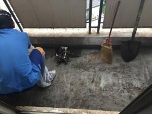 鳩の糞の除去作業(大阪府豊中市)